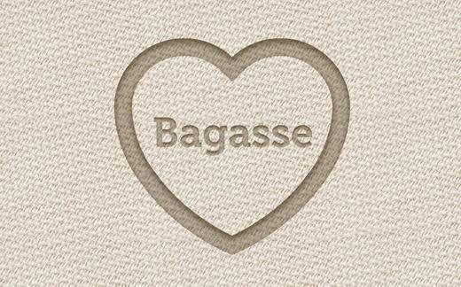 bagasse love heart close up