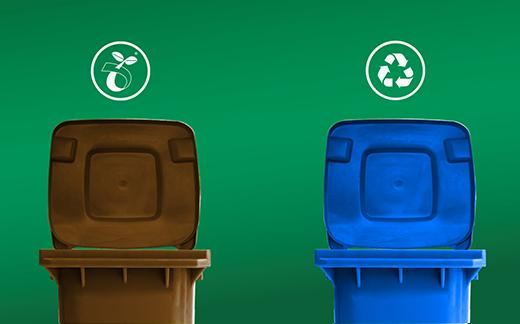 composting and recycling bins