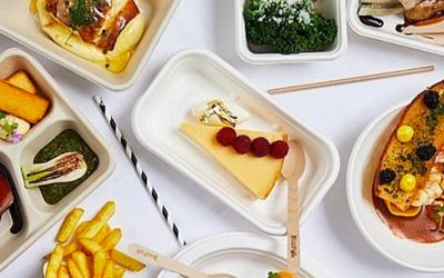 Range of compastable takeaway packaging with delicious meal in it