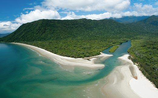 How can we save the Daintree Rainforest?