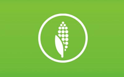 corn bioplastic icon