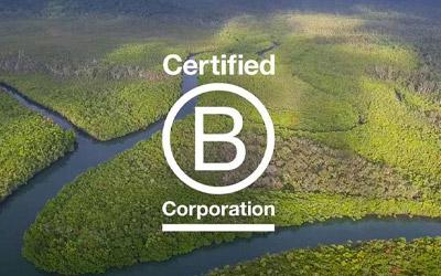 landscape aerial from the Rainforest Rescue with white B Corp logo