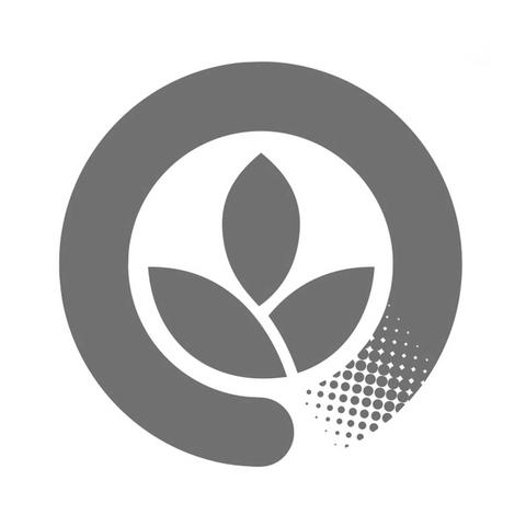 24cm Square Palm Plate