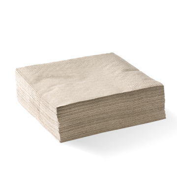 2 Ply 1/4 Fold Natural Corner Embossed Dinner BioNapkin
