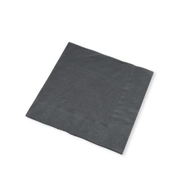 25cm 2-ply Black Cocktail Napkins