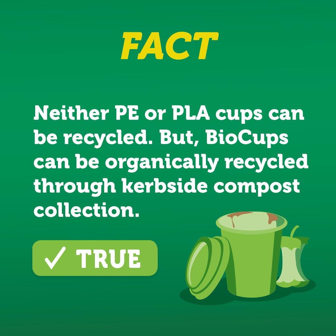 biocup fact