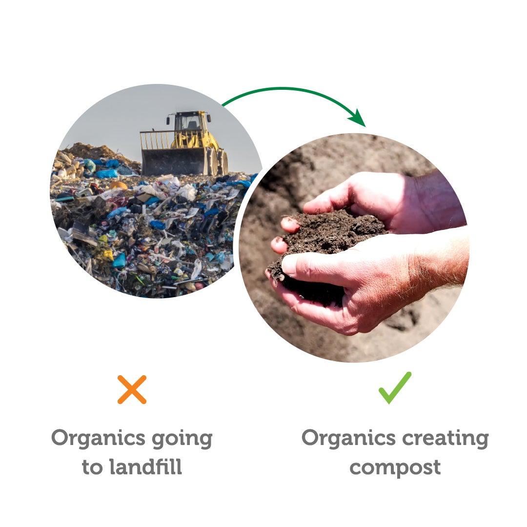 divert organics from landfill