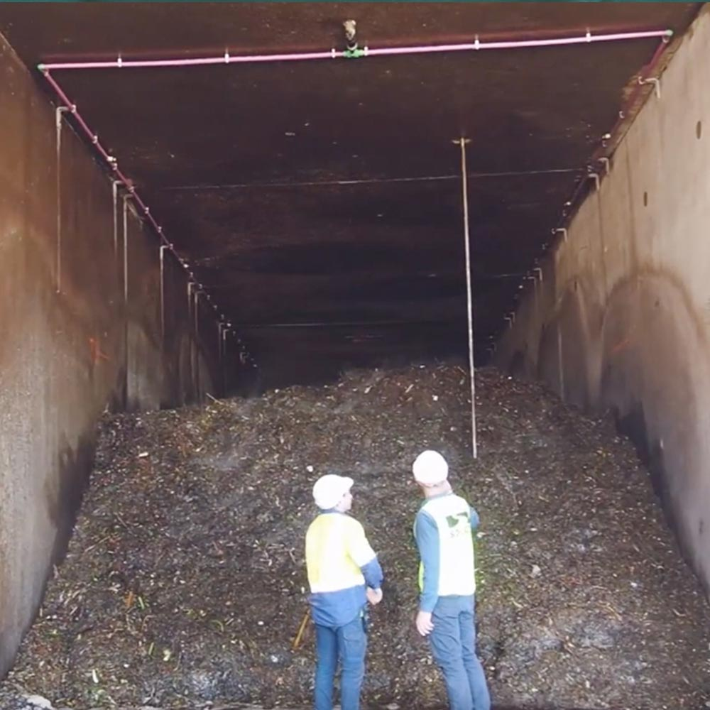 workers looking at industrial compost heap