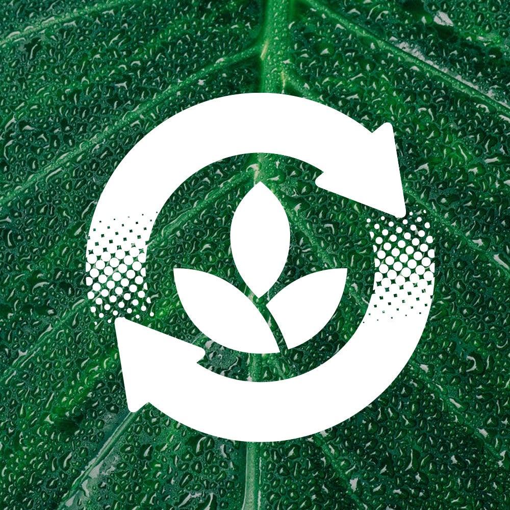 bioplastic aligns with the circular economy
