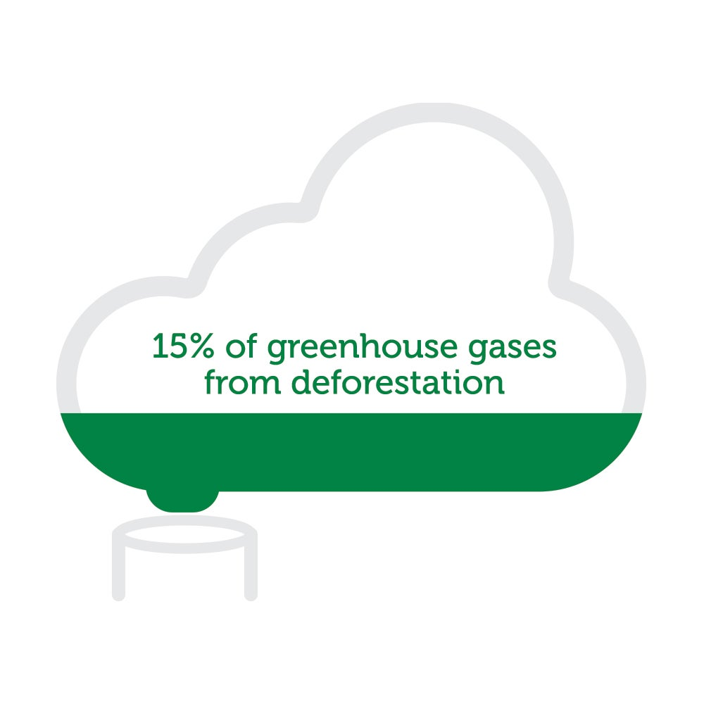 greenhouse gases and climate change from deforestation