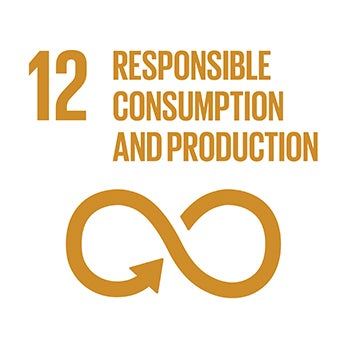 number 12 responsible consumption and production