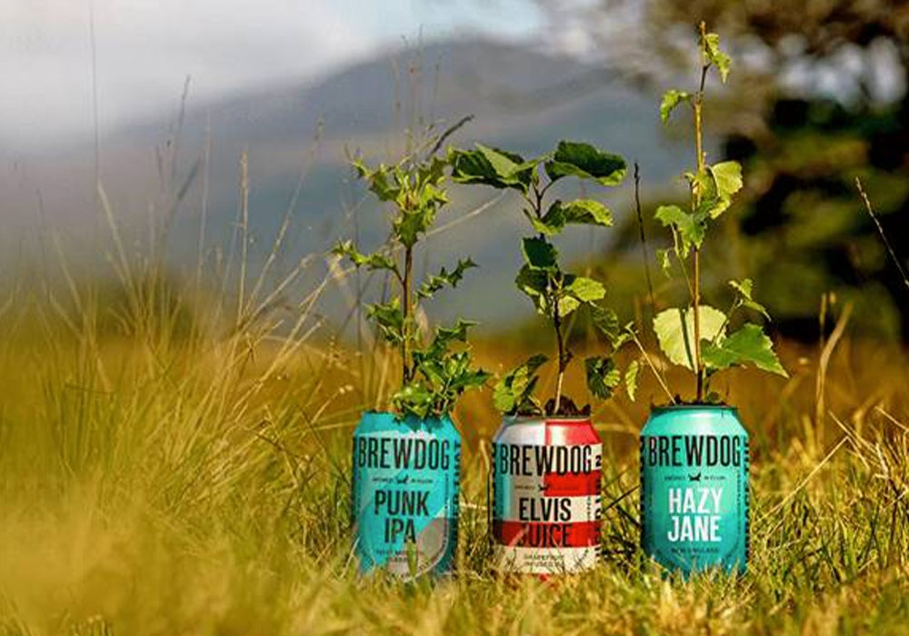 beer-can-with-trees.jpg